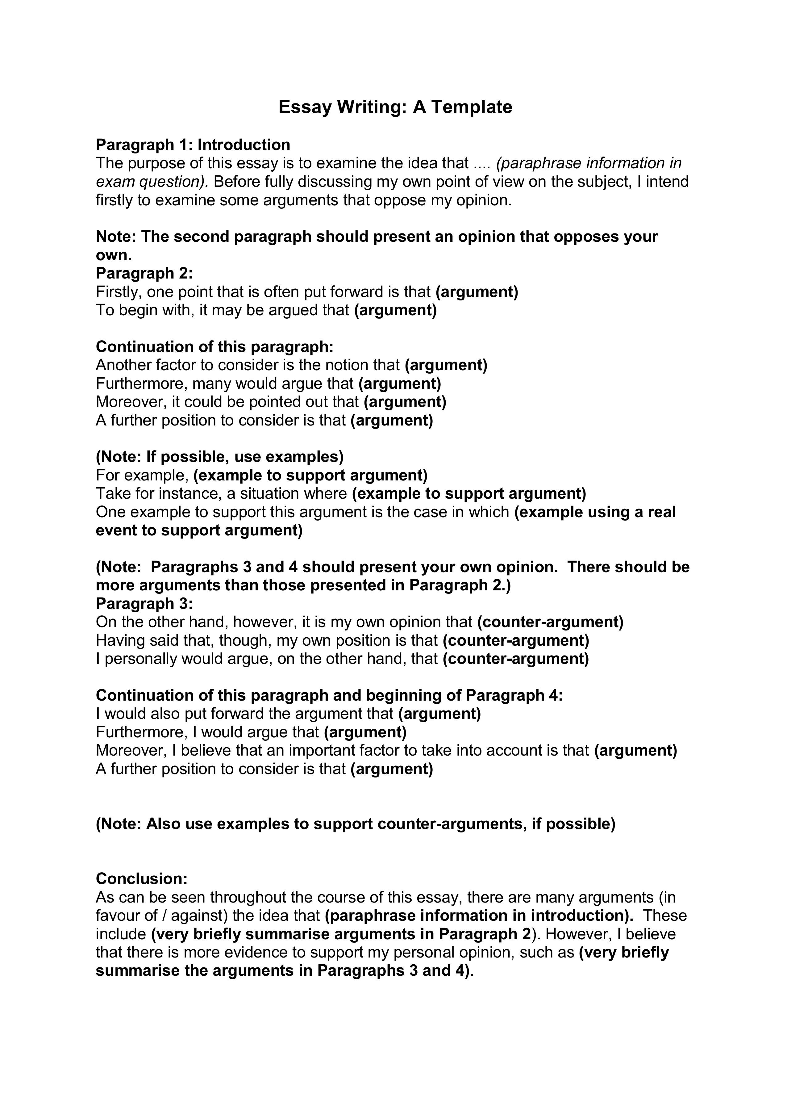 example essay argumentative writing